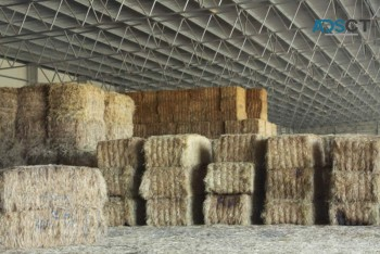 Steel Hay Sheds and Barns Design and Construction – Entegra