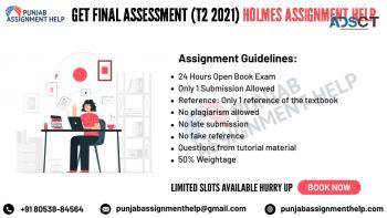 Holmes Final Assessment Help