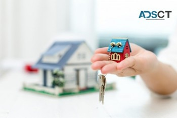 Real Estate Agents Helping With a Network of Buyers and Sellers