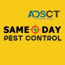 Local Pest Control Perth