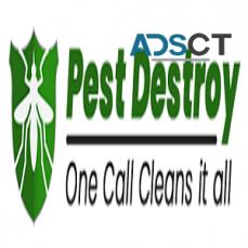 Pest Control Service Adelaide