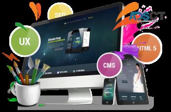 Custom Web Design Services in Perth