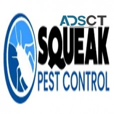 Pest Control Service Sydney