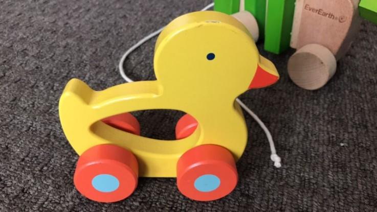 Wooden duck toy