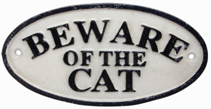 Beware of the Cat Sign Oval