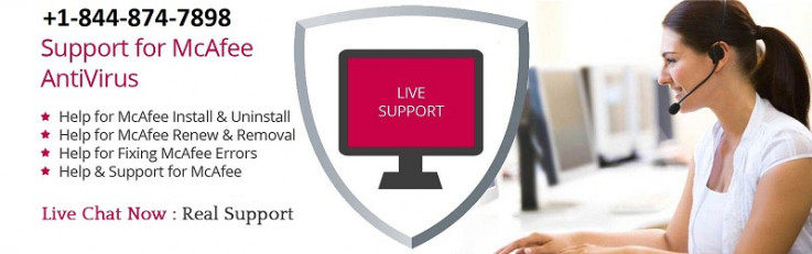 McAfee Support Phone Number (Toll Free)