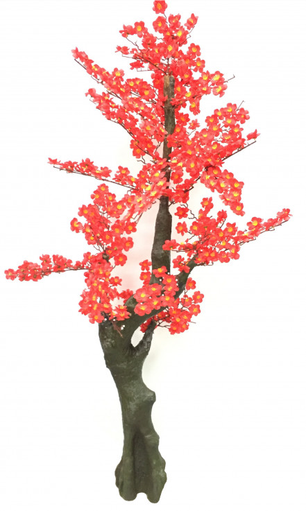 Chinese Blossom Tree – 150cm